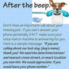 Answer your phone! Find more tips to help you find your dog at lostdogsofamerica.org