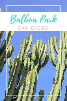 Travel Guide to San Diego Zoo & Balboa Park #SanDiego #BalboaPark #SanDiegoZoo