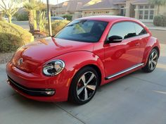 Red 2012 beetle