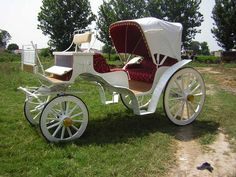 Traditional Horse Drawn Carriage with elegant wedding accoutrements -  Rent a carriage & white horese to carry you to the church or ceremony in style & with old world charm / http://www.wedding-horse.co.uk