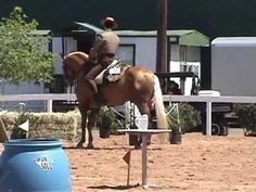 Working Equitation Ease of Handling - YouTube