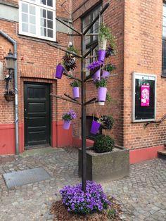 Vintapperstræde, Odense Blomsterfestival august 2014