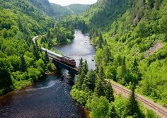 Ontario Scenic Train Rides Are The Best Way To See The Province's Natural Beauty - Narcity Michigan Vacations, Michigan Travel, Vacation Trips, Vacation Spots, Vacation Ideas, Lake Michigan Vacation, Travel Oklahoma, Italy Vacation, Oh The Places You'll Go