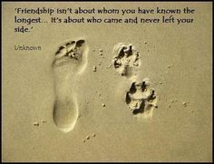 """""""Friendship isn't about whom you have known the longest... it's about who came and never left your side"""" - Love this quote <3"""