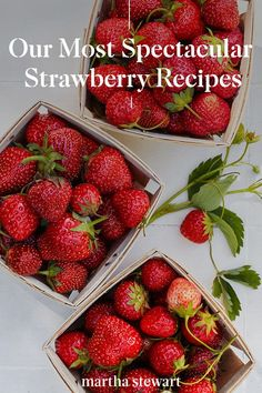 Enjoy summer strawberries all season long with these spectacular strawberry recipes for breakfast, brunch, or dessert. From fresh strawberry shortcake, quick strawberry jam, strawberry cobbler, and many more classic fruit desserts. #marthastewart #recipes #recipeideas #fruitrecipes #fruit Strawberry Cobbler, Strawberry Recipes, Fruit Recipes, Strawberry Shortcake, Veggie Recipes, Strawberry Fields, Breakfast Dishes, Breakfast Recipes, Cookbook Recipes