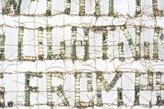 """""""Not Like"""" (detail) Shredded money, thread, 14 x 22.5 inches, 2017 by Lisa Kokin  Text is from """"The New Colossus"""" by Emma Lazarus."""