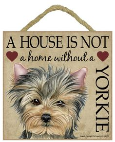 Yorkie Yorkshire Terrier Dog Sign-yorkie yorkshire terrier wood dog breed sign love is being owned by house not a home spoiled rotten lives here cute