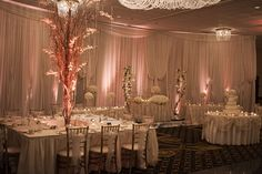 Carlucci rosemont wedding