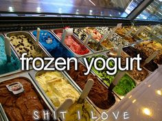 Shit I Love : Frozen Yogurt