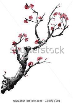 Sakura tree watercolor japanese cherry blossoms Ideas for 2019 Cherry Blossom Drawing, Cherry Blossom Tree, Blossom Trees, Pink Blossom, Japanese Cherry Tree, Japanese Art, Tatouage Delta, Blossom Tree Tattoo, Tattoo Tree