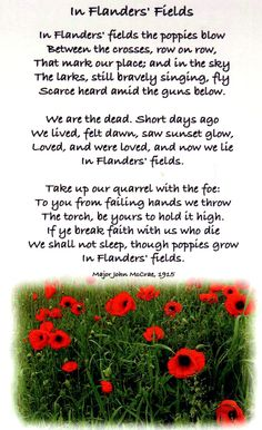 In flanders fields poppy poem epanthony pinterest poems in flanders fields poem essay sample in flanders fields a symbolism analysis from this poem let us write you a custom essay sample on in flanders mightylinksfo