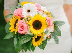 Image result for sunflower yellow, red, soft pink
