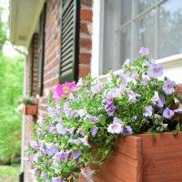 Spring Pinterest Challenge: Planting & Hanging Window Boxes