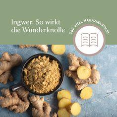 Ingwer ist wahrlich eine kleine Wunderknolle – eingesetzt bei Erkältungen, Übelkeit oder beim Abnehmen trägt die Wurzel zu mehr Wohlbefinden bei 🌱 Bekannt ist die gesunde Knolle auch für ihre einzigartige Schärfe, die sie den enthaltenen Scharfstoffen, wie Gingerol, zu verdanken hat. Lesen Sie mehr über die Einsatzmöglichkeiten und die richtige Anwendung von Ingwer im CBD VITAL Magazin. Food, Nth Root, Feel Better, Interesting Facts, Losing Weight, Reading, Food Food, Essen, Meals