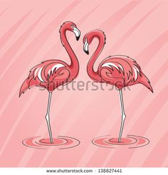 Two pink flamingos standing in water on abstract background with lines. - stock vector