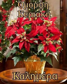 Greek Christmas, Christmas Wishes, Christmas Wreaths, Merry Christmas, Xmas, Good Afternoon, Good Morning, Happy Sunday, Good Night