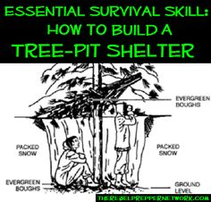 Essential Survival Skill: How to Build a Tree-Pit Shelter