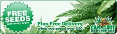 We are a highly trusted UK Supplier of quality Cannabis Seeds.
