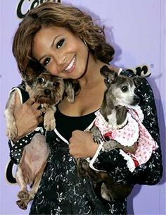 a1248c71d2a9 Christina Milian and her chi named Baby Christina Milian, Chihuahua Love,  Small Dog Breeds