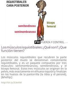 58 Ideas De Salud Salud Fuerza Periostitis