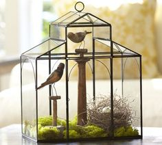 If I get really into terrariums, I'm going to treat myself to this: Glass House Terrarium | Pottery Barn