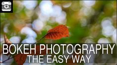 Bokeh Photography – The easy way