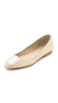 Anniel Pointed Ballerina Flats | classic with a metallic twist