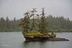 Tiny islands near Valdez, AK