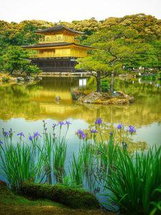 Gold and violet, Kinkakuji, Kyoto, Japan