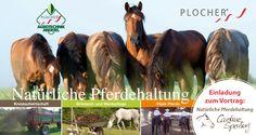 85232 Eschenried (Bayern)  10/03/16 Vortrag: Grünland- und Weidepflege für vitale Pferde, 19:00-20:00 mit Monika Junius