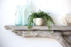 Natural Driftwood Shelf - Perfect Mantle // Size LARGE on Etsy, $145.00