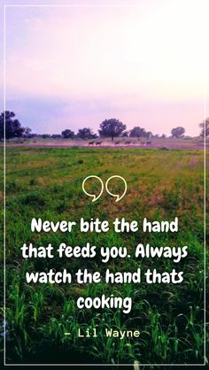 For you, we have some famous Don't Bite the Hands that Feeds You Quotes. These quotes might inspire you to be sincere with your work and with the people who give you that work. Motivational Quotes For Success Career, Need Motivation, Be Yourself Quotes, Earn Money, Inspire, Hands, People, Life, Earning Money
