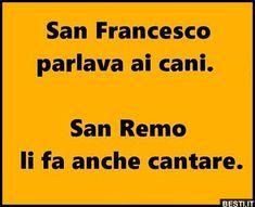 San Francesco   BESTI.it - immagini divertenti, foto, barzellette, video