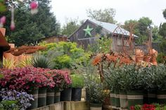 Gardening events at Cottage Gardens | Shop SoCo  one of my favorites