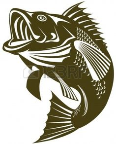 Bass Fish Coloring Pages Animals Pinteres