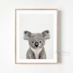 Baby Koala Print, Woodland Nursery Animal, Baby Animal Nursery Decor, Wall Art by Amy Peterson – Amy Peterson Art Studio™ - Baby Animals