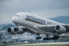 Airline industry likely to remain highly competitive even after SIA Singapore Airlines is the flag carrier of Singapo. Singapore Changi Airport, Singapore Travel, Disney Planes, Best Airlines, Aviation Industry, Airbus A380, Airline Flights, Dance Moms, Southeast Asia