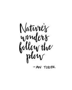 Natures Wonders Print by PenImpress on Etsy