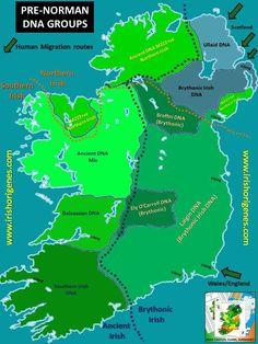 Irish Origenes Presentation in Coleraine November 2013   Irish Origenes: Use Family Tree DNA to Discover Your Genetic Origins   Clans of Ire... Dna Genealogy, Family Genealogy, Ancestry Dna, Family Origin, Family History, Ireland Map, November 2013, Irish Celtic, Origins