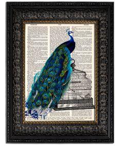 Peacock Art Print PEACOCK on BIRD CAGE dictionary art print on vintage dictionary page 8x10. $10.00, via Etsy.