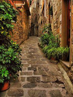 Narrow street, Liguria Italy