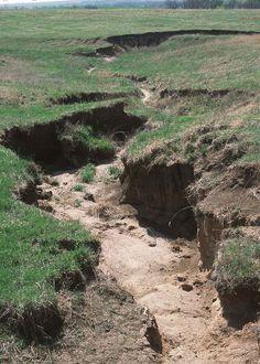 erosion   gully erosion in a pasture image by nrcs splash erosion