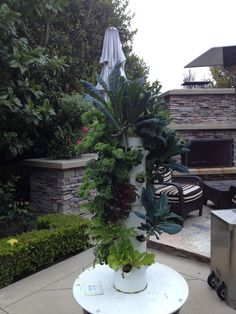 """Takes up small space in my backyard! Our vertical """"FARM"""" to table!  No soil, organic, vine ripened, and delicious!  My kids are eating more veggies ~ off the vine!"""