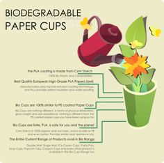 biocups-info-banner-square.png (347×345)