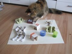 DIY Puzzle feeder- kfb13                                                       …