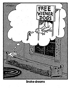 """""""The Far Side"""" by Gary Larson. (I know it's perverse to be pinning this on Sophie's board but it's funny!)"""