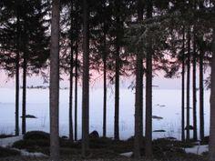 Winter sunset 1
