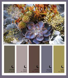 MAtthew Craig Color PAlette