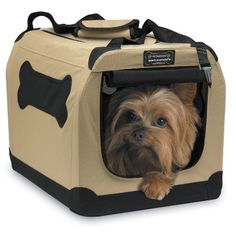 Petnation Indoor/Outdoor Pet Home, 16-Inch, for Pets up to 10 Pounds