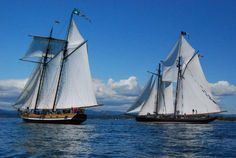 """""""Pacific Swift"""" and """"Pacific Grace"""" returning to home port Victoria. photo -www.salts.ca"""